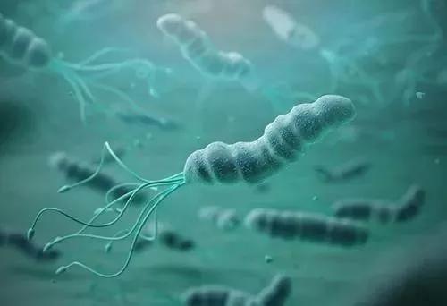 经常外出吃饭如何避免幽门螺杆菌感染